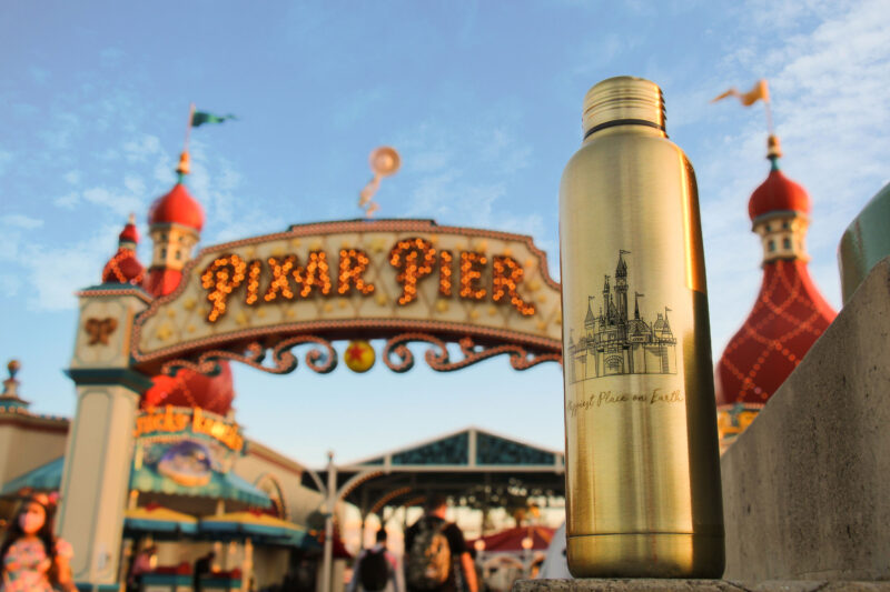 Limited Edition Disney Stainless Steel Water Bottle